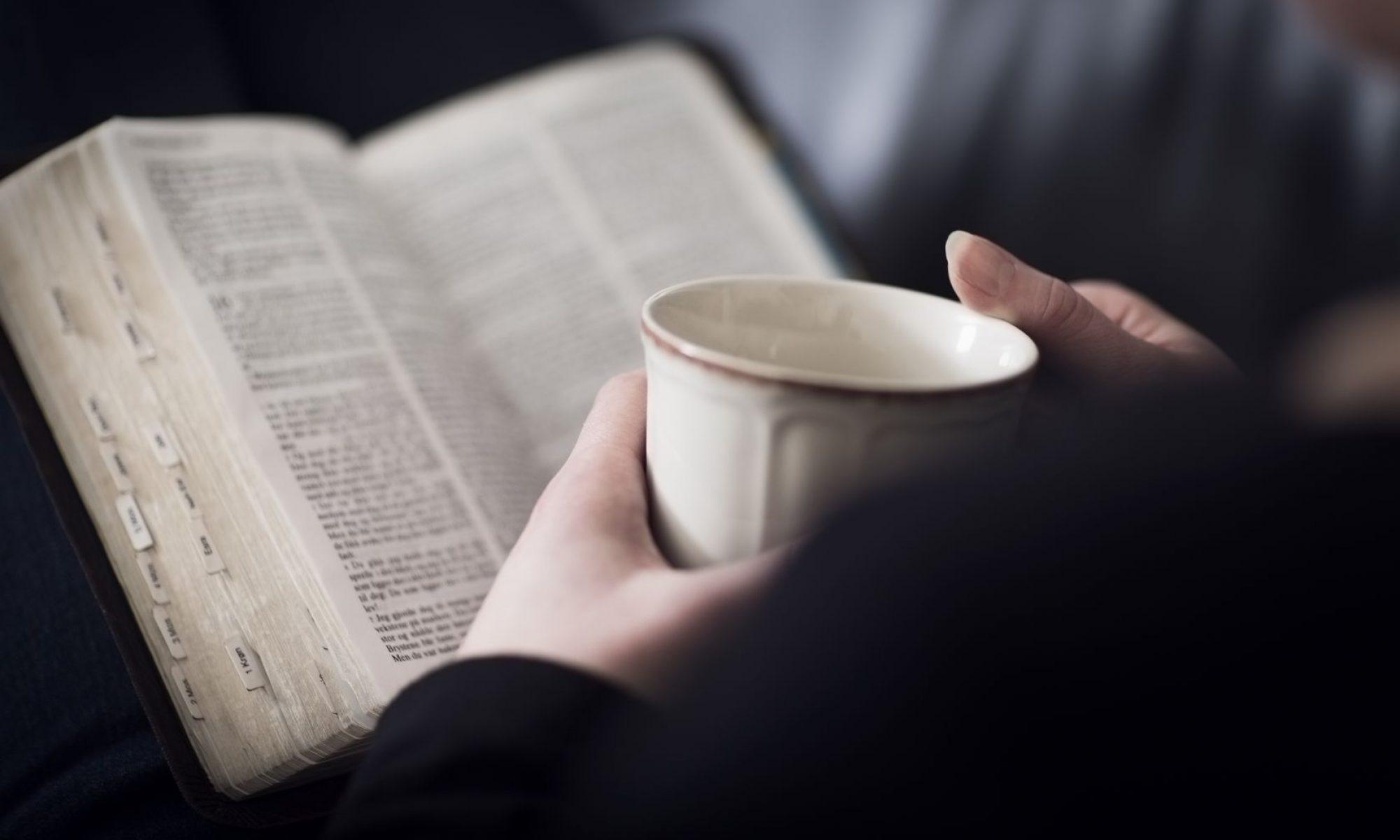 2020 Bible Vision